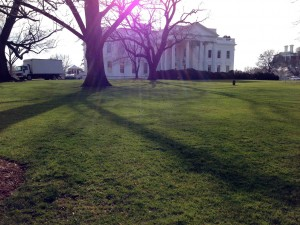 The White House, in my home town