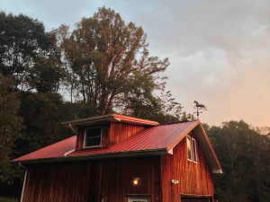 The morning sun bounces off the barn roof