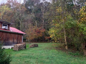 Back home outside my garage and shop... the fall colors wrapped us serenely