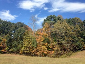 Fall comes to Meigs County