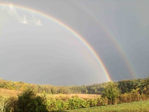 Double rainbow... good luck!