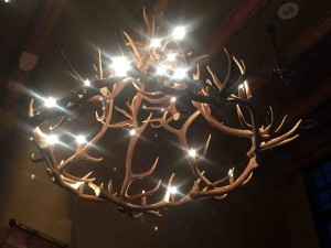 Many elk contributed to this chandelier...