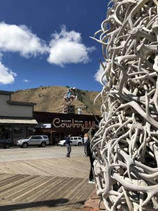 What's a trip to Jackson Hole without a shot of the antler pile in the square?