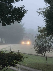 Misty homecoming...
